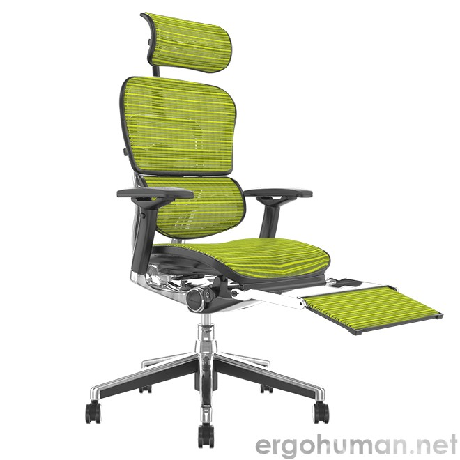 Ergohuman Elite Green Mesh Office Chair with Leg Rest